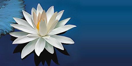 Beginning Guided Mindfulness Meditation tickets