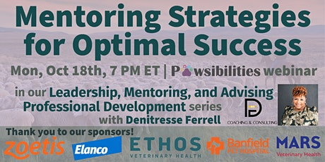 Mentoring Strategies for Optimal Success tickets
