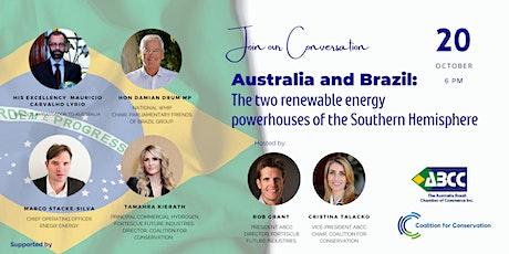 Australia & Brazil: Two Renewable Energy Powerhouses | Southern Hemisphere tickets
