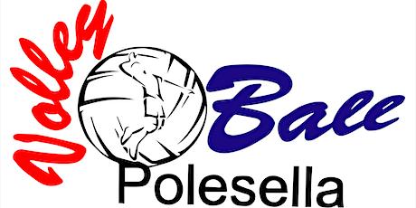VOLLEYBALL POLESELLA UNDER 18 - PROJECT STAR VOLLEY biglietti