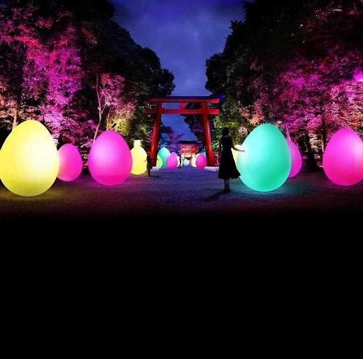 Afbeelding van Japan Light Festival Amsterdam