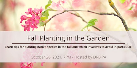 Fall Planting in the Garden: Choosing Native Species & Invasives to Avoid tickets
