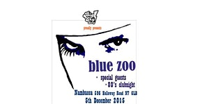 Big Sky Song presents BLUE ZOO Live at Nambucca +...