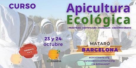 Curso de apicultura ecológica en Mataró, Barcelona entradas