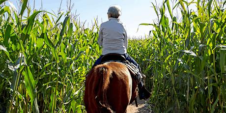 Derthick's Corn Maze Trail Ride (Saturday 11/6/2021) tickets