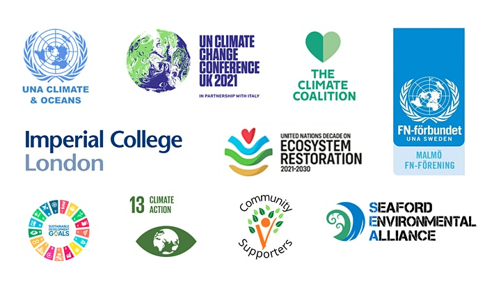 UN COP26: expectations, challenges, goals and actions image