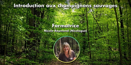 Introduction aux champignons sauvages du Québec - 27 octobre 2021  -19h billets