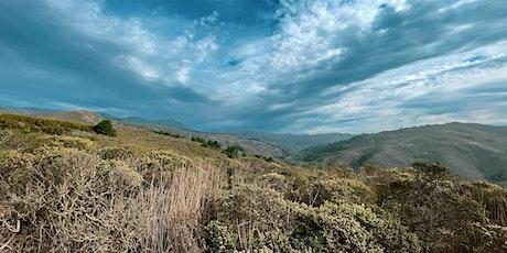 #PhotoHike Through Palomarin Trailhead To Alamere Falls tickets