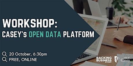 Data Insights Workshop - Casey Open Data Platform tickets