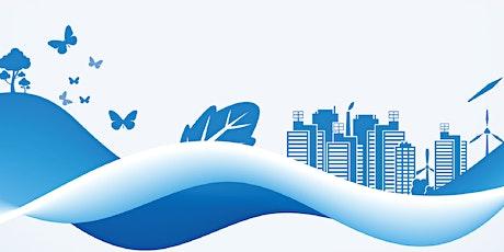 低碳与创新发展,迈向碳中和 | Roundtable on BRI Green Development and BRIGC Studies tickets