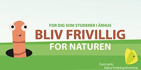 Bliv frivillig i DN Aarhus Ung tickets