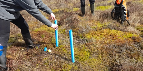 Bog Science -  fieldwork and data collection tickets
