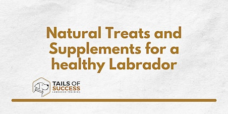 Homemade treats and supplements for a healthy Labrador tickets