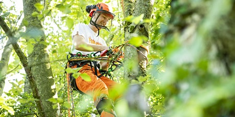 Sparsholt Open Day - Saturday 13 November 2021 - Arboriculture & Forestry tickets