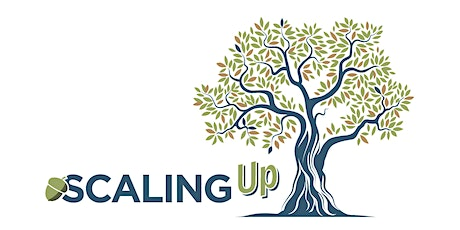 Annual Workshop Plenary 2: Mainstreaming Scaling in Donor Organizations tickets