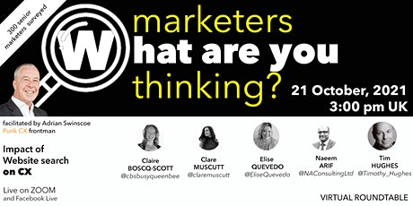 CX: Marketers what are you thinking? UK site search survey (300 marketers) biglietti