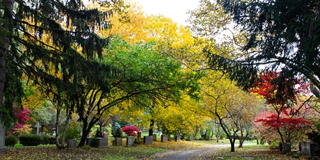 Halloween Loop Hike from Mount Pleasant Cemetery tickets