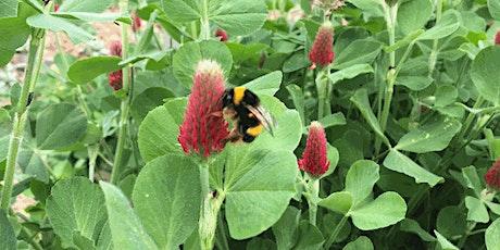 Práticas para a Biodiversidade no contexto das Alterações Climáticas bilhetes