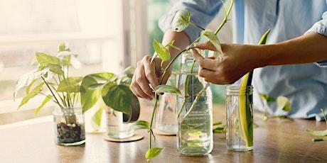 Plant Propagation 101 with Fleet Farming (Webinar) tickets
