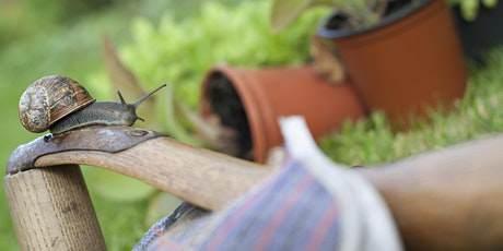 Sustainable Gardening: Peat-Free and Beyond tickets