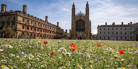 Online talk: King's College Wildflower Meadow tickets