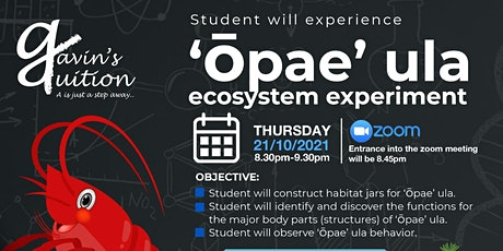 Opae Ula Ecosystem Tickets