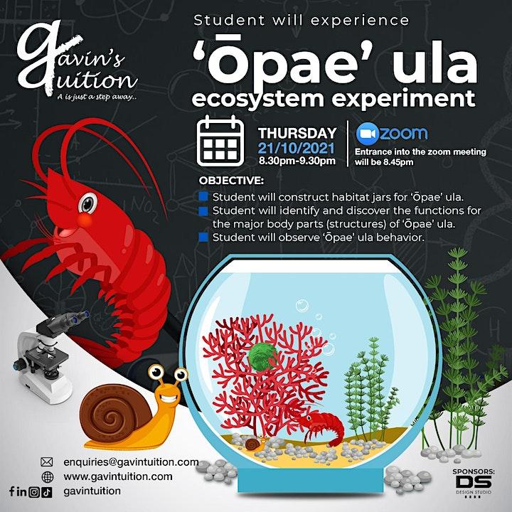 Opae Ula Ecosystem image