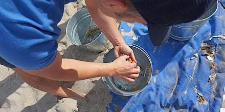 Surfrider Foundation Monthly Beach Clean-up tickets