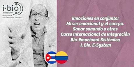 EMOCIONES EN CONJUNTO: MI SER EMOCIONAL Y EL CUERPO. SANAR SANANDO A OTROS entradas