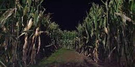 Corn Maze at Night! tickets