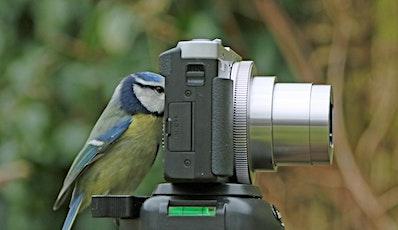 Bird Watching in the Garden tickets
