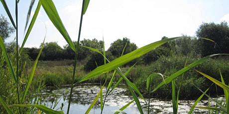 I-Spy Wildlife Event at Leybourne Lakes Country Park tickets