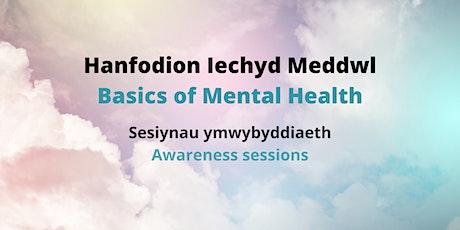 Anxiety (Basics of Mental Health) - Pryder (Hanfodion Iechyd Meddwl ) tickets