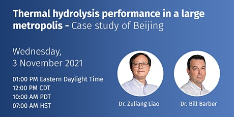 Thermal hydrolysis performance in a large metropolis: case study of Beijing tickets