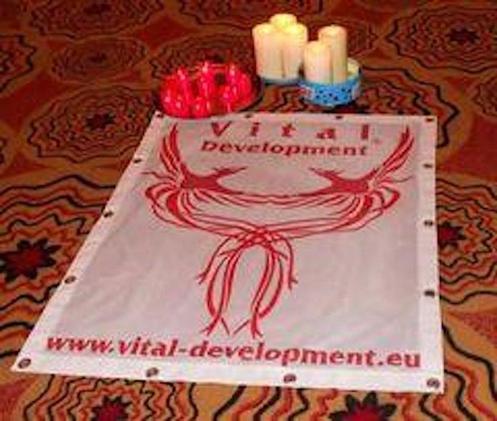 "Vital Development ""VitalDanza®"" Dance of Life Workshop. image"
