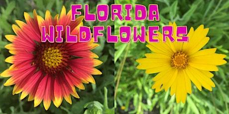 Wildflower Gardening - webinar tickets