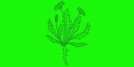 Prisoner's Herbal | Walk & Workshop with Nicole Rose and Mitch Miller tickets