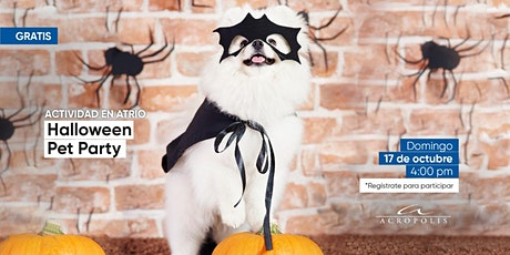Halloween pet party entradas