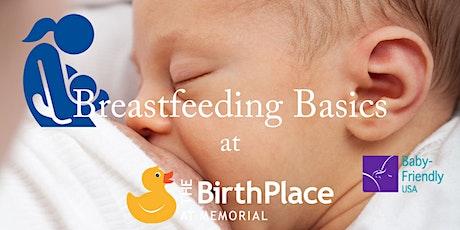 Breastfeeding Basics tickets