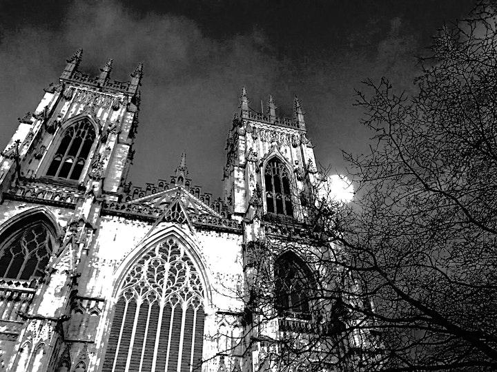 York Walls Festival Extra: Twilight Walls - 'Bat Experience' Sessions image