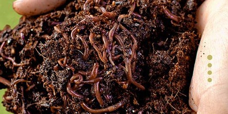 Homestead 101: Session  Six Worm Composting tickets