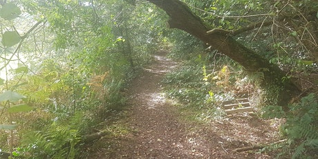 Drefach Felindre 10 Mile/10km Walk/Jog/Run Challenge tickets