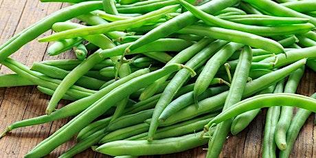 Lunch & Learn Green Bean Casserole tickets