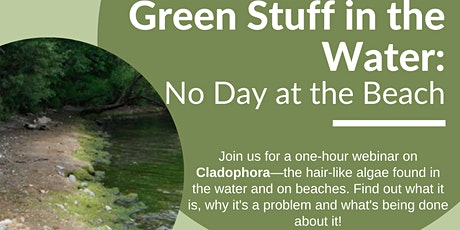 WEBINAR Green Stuff in the Water: No Day at the Beach entradas