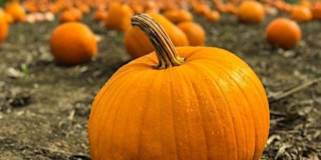 Trolley Portal Pumpkin Patch tickets