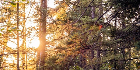Landscape Photography Workshop tickets