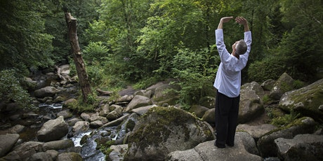 Shaolin Qigong Workshop: Generating Energy Flow for Health and Vitality tickets