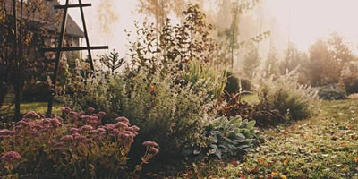 Putting Your Gardens to Bed