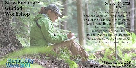 Slow Birding™ Guided Workshop tickets