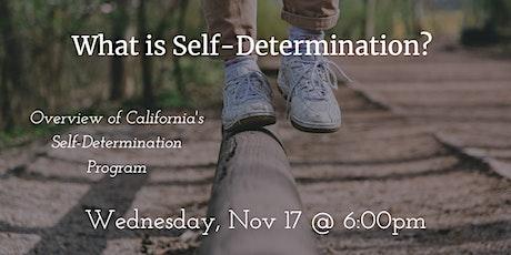 Overview of  Self-Determination Program tickets